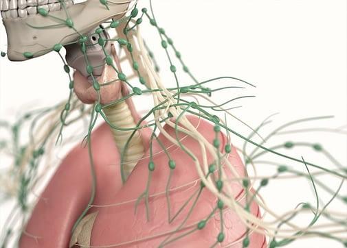 Διόγκωση Λεμφαδένων - Λεμφαδενοπάθεια
